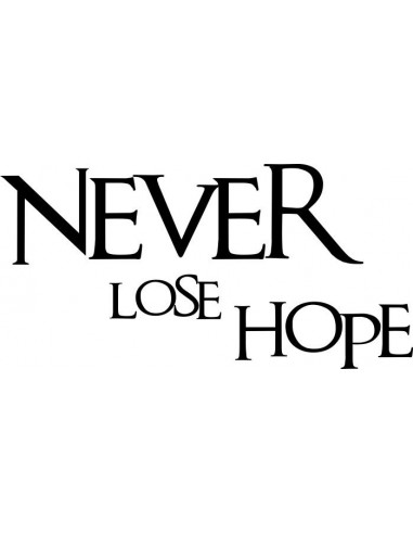 Never lose hope 170