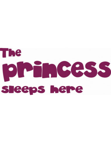 The princess sleeps here 28