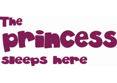 The princess sleeps here 28