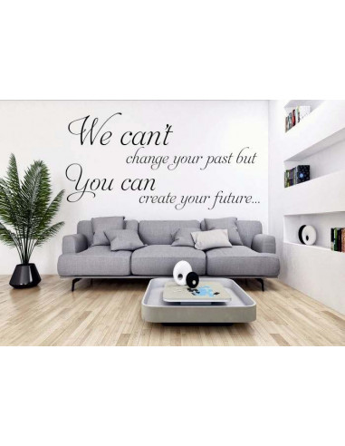 We can't chance your past but you can create your future 293