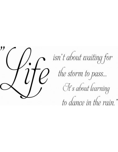 Life isn't about waiting for the storm to pass... 312