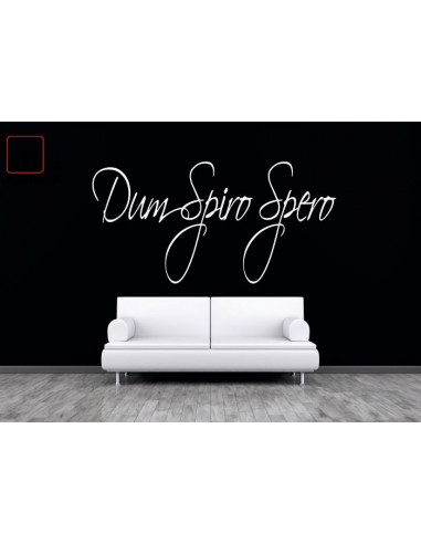 Dum Spiro Spero 323