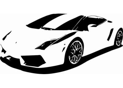Naklejka samochód 1300