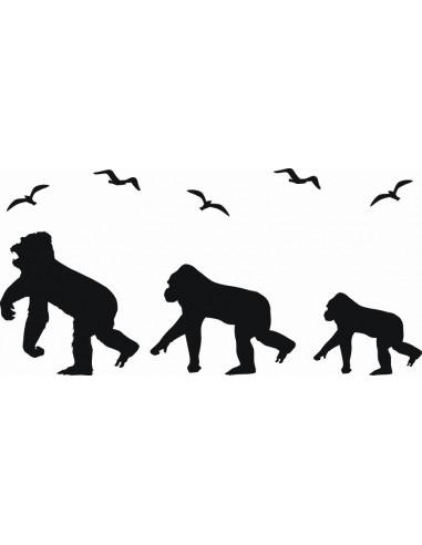 Naklejka ścienna Małpy 1061