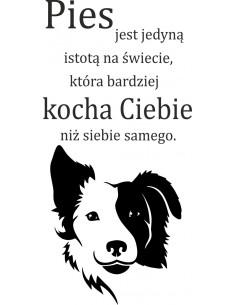 naklejka ścienna Pies jest jedyną istotą na świecie ...