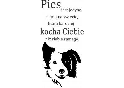 naklejka ścienna Pies jest jedyną istotą na świecie ... 2002