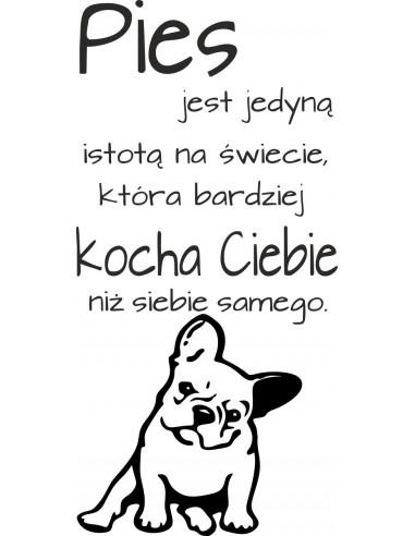 Naklejka  Pies jest jedyną istotą na świecie ...