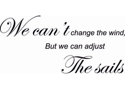 We can't  change the wind But we can adjust the sails 85