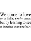 We come to love not by finding a perfect person but by learning to see an imperfect person perfectly 120